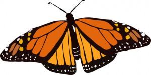 MonarchButterfly_xs